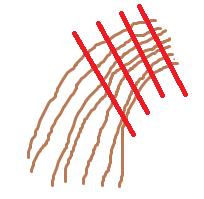 hårprøve